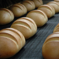 IMPROVERS FOR INDUSTRIAL BREAD
