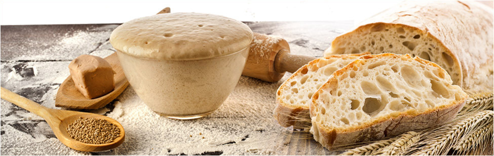 SPECIALIZED MIXES FOR BREAD